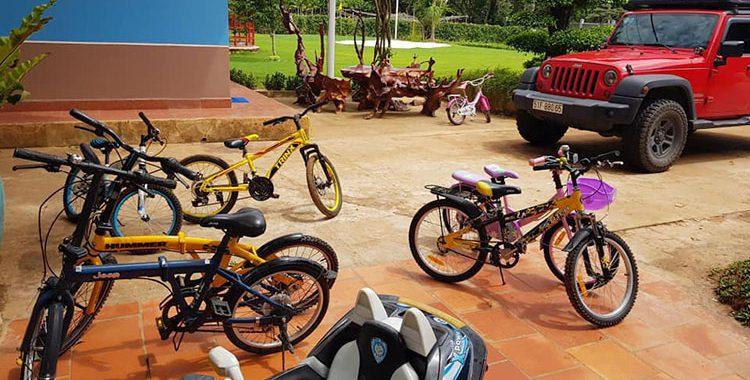 Đạp xe đạp quanh nông trại